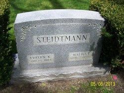 Dr Waldo E Steidtmann