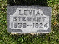 Levi A. Stewart