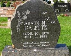 Shaun M. Palette