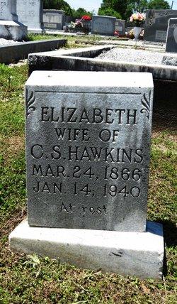 Elizabeth <i>Burgess</i> Hawkins