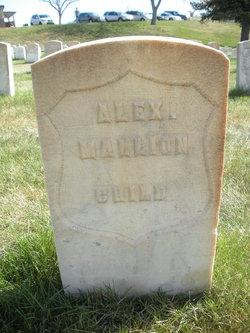 Alexander Mallion