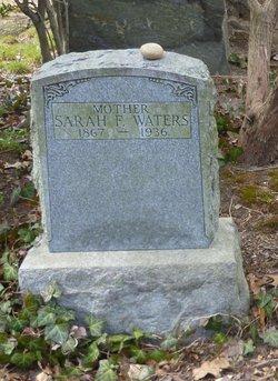 Sarah F Waters