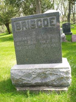 Robinson Mills Briscoe
