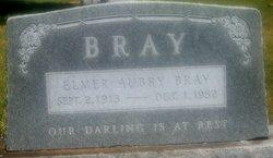 Elmer Aubry Bray