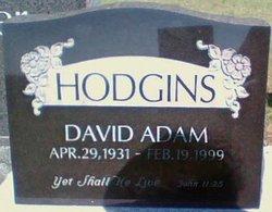 David Adam Hodgins