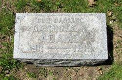 Carroll R Adams