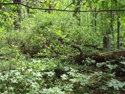 Dragoo Cemetery