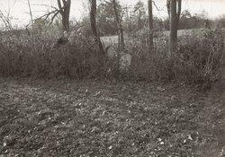 Beshor Farm Burial Ground