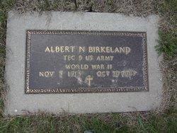 Albert Nelius Birkeland