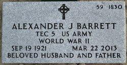Alexander J Barrett
