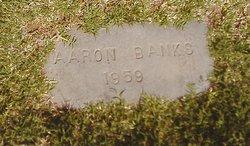 Aaron Banks