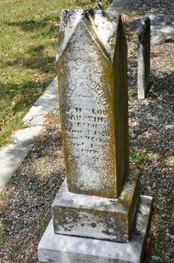 Alexander M. Austin