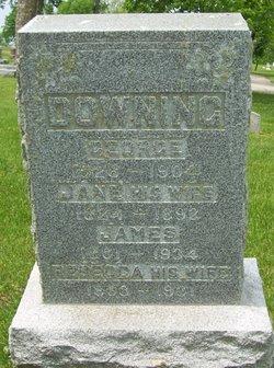 Jane <i>York</i> Downing
