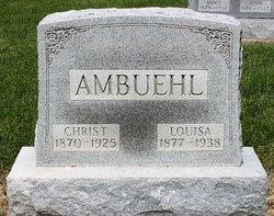 Christ T Ambuehl