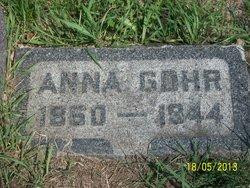 Anna Gohr