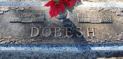 Ludwig Dobesh