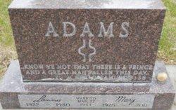 Lonnie Adams