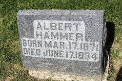 Albert P Hammer