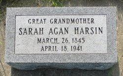 Sarah <i>Agan</i> Harsin