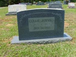 Collie Joyvies
