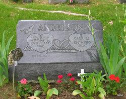 James E. Jim Anderson