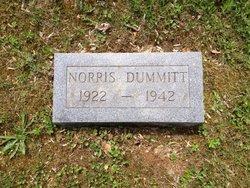Norris Dummitt