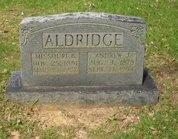 Andrew J. Aldridge