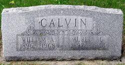 Aurel Glen <i>Mogle</i> Calvin