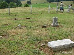 Ashlin-Wilkinson Family Cemetery