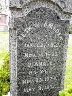Seth W. Amsden