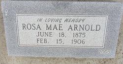 Rosa <i>Spellar</i> Arnold