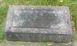 Agnes Anna Ag <i>Spragg</i> Hooks