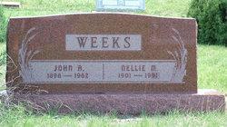 Nellie Maude <i>Brown</i> Weeks
