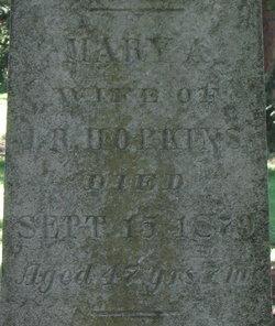Mary Ann <i>Gilbert</i> Hopkins
