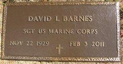 David L Barnes