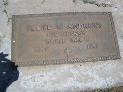 Floyd Milford Andrews