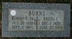 Robert E. Burns, Jr