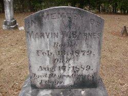 Marvin W. Barnes