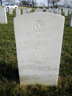 Lloyd Payne Bedingfield
