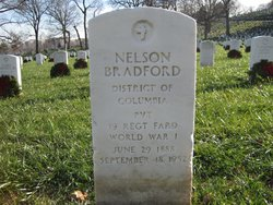 Nelson Bradford