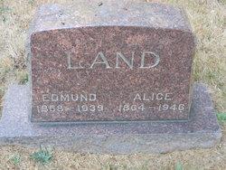 Edmund Land
