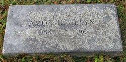 Amos H Allyn