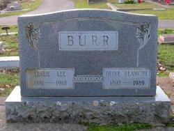 Olive Blanche <i>Mast</i> Burr
