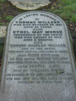 Thomas H. Willson
