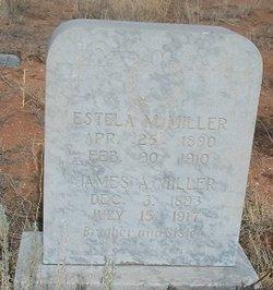 Estela M Miller