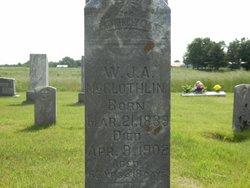 William James <i>Alexander</i> McGlothlin