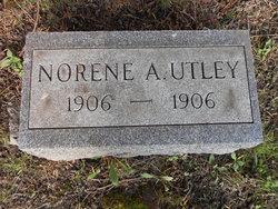 Norene A Utley