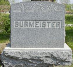 Heinrich Henry Burmeister