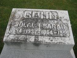 Sarah <i>Levy</i> Cohn