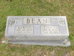 Eliza Jane <i>Martin</i> Bean